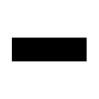 Wyse Cashmere logo